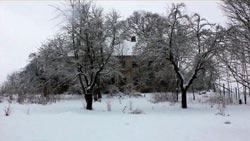 Sholtz's House