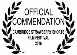commendation laurels 2016